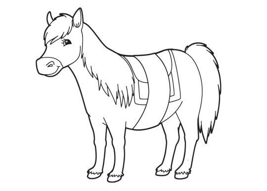 kolorowanka konie dla najmłodszych