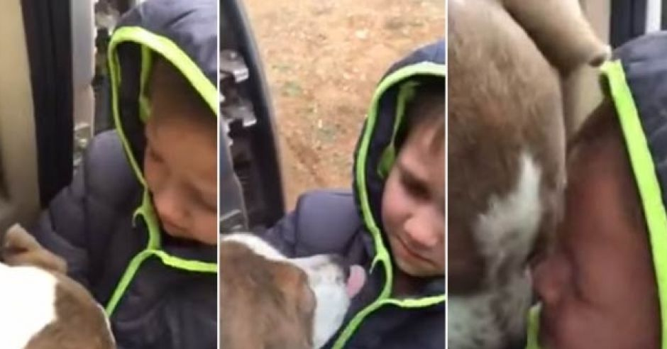 6-latek wita się z odnalezionym po miesiącu psem