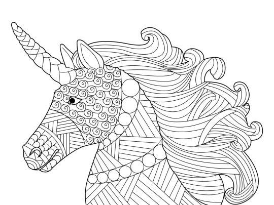 kolorowanka konie portret jednorożca
