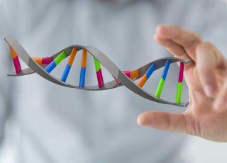 Badania genetyczne, DNA, genom, geny a niepłodność, badania na niepłodność, badanie kariotypu
