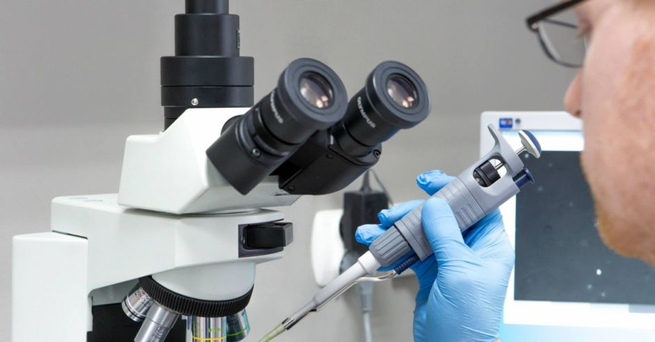 badanie, mikroskop
