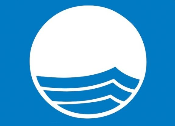 błękitna flaga logo
