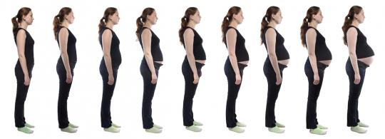 brzuch w ciąży widok z boku