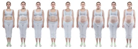 brzuch w ciąży widok z przodu