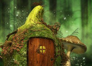 chatka tymoteusza bajka czytelniczki