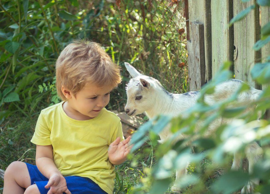 Chłopiec, który bawi się na wsi