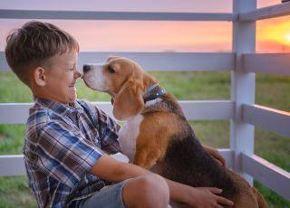Chłopiec, który bawi się z psem