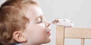 Chłopiec z myszką