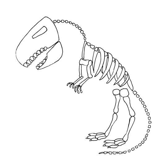 dinozaury kolorowanka szkielet dinozaura