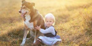 dlaczego dziecko powinno mieć zwierzątko domowe