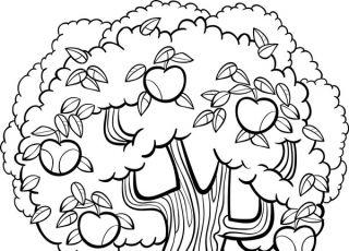 drzewo, kolorowanka, jabłoń, kolorowanka dla dzieci, kolorowanka do druku