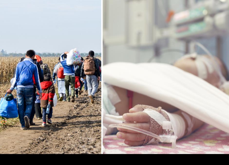 dzieci z Afganistanu zatruły się grzybami