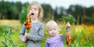 Dzieci z marchewką