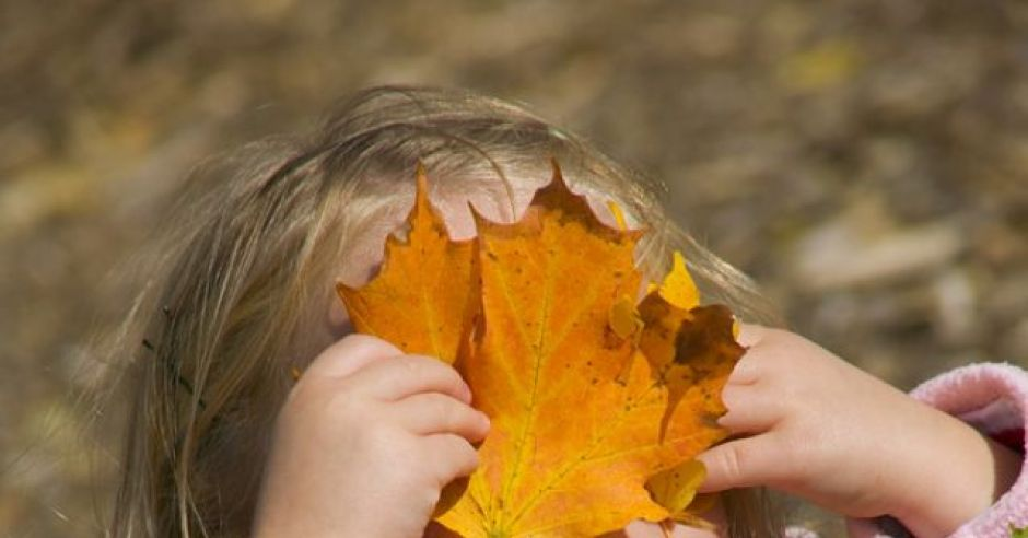 dziecko, dziewczynka, jesień, liście, park