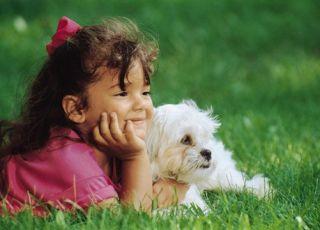 dziecko, dziewczynka, trawa, zieleń, pies, lato