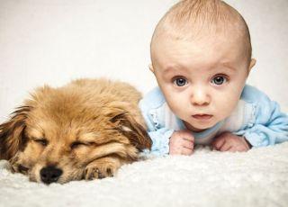 dziecko i szczeniak