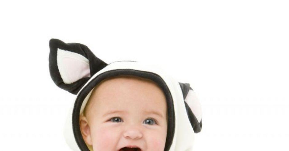 dziecko, krowa