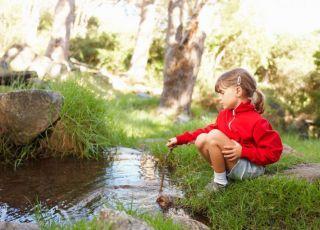 dziecko, las, wakacje