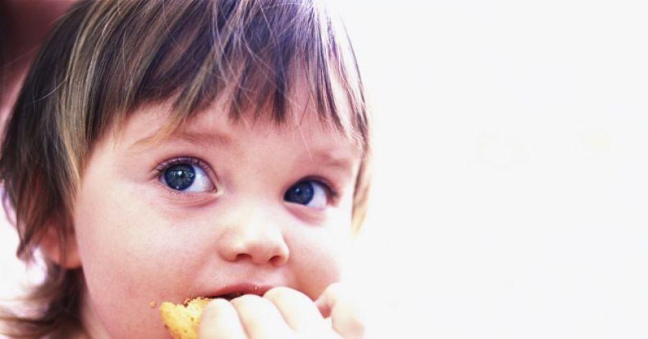 dziecko, maluch, odżywianie, ciastko