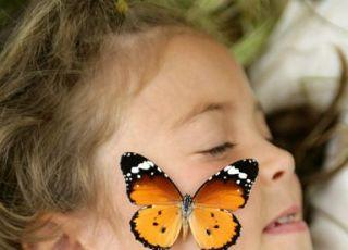 dziecko, motyl, ekologia