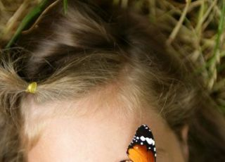 dziecko, natura, motyl, dziewczynka, leżeć