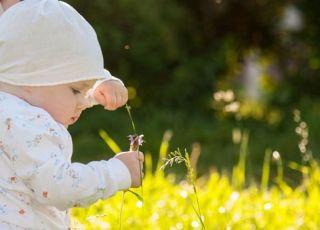 dziecko, niemowlę, łąka, kwiaty, lato