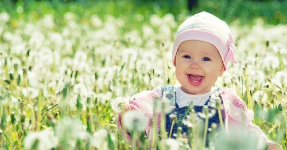 dziecko, niemowlę, łąka, lato, dziecko na łące