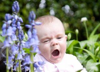 Dziecko uczulone na pyłki