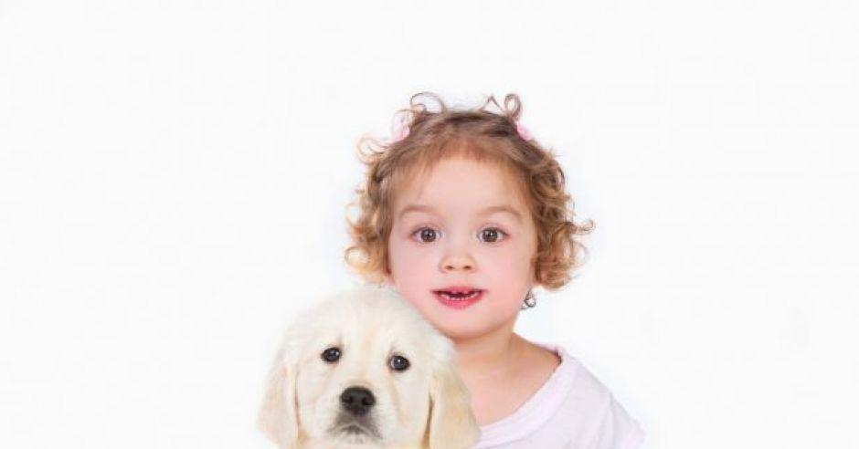 Pies dla niemowlaka i malucha