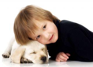 Pies dla ucznia