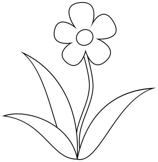dzień kobiet kolorowanki prosty kwiatek