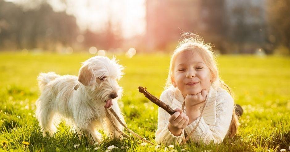 dziewczynka, pies, zabawa z psem