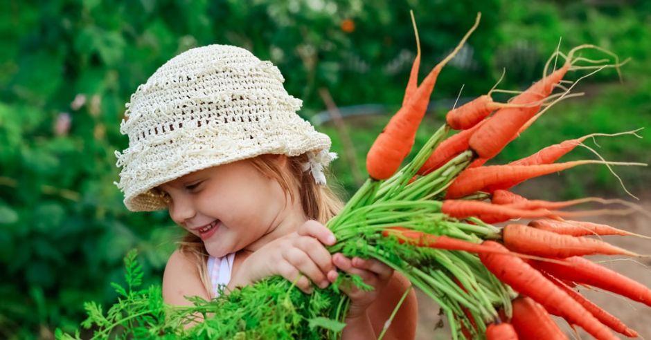 dziewczynka z marchewką