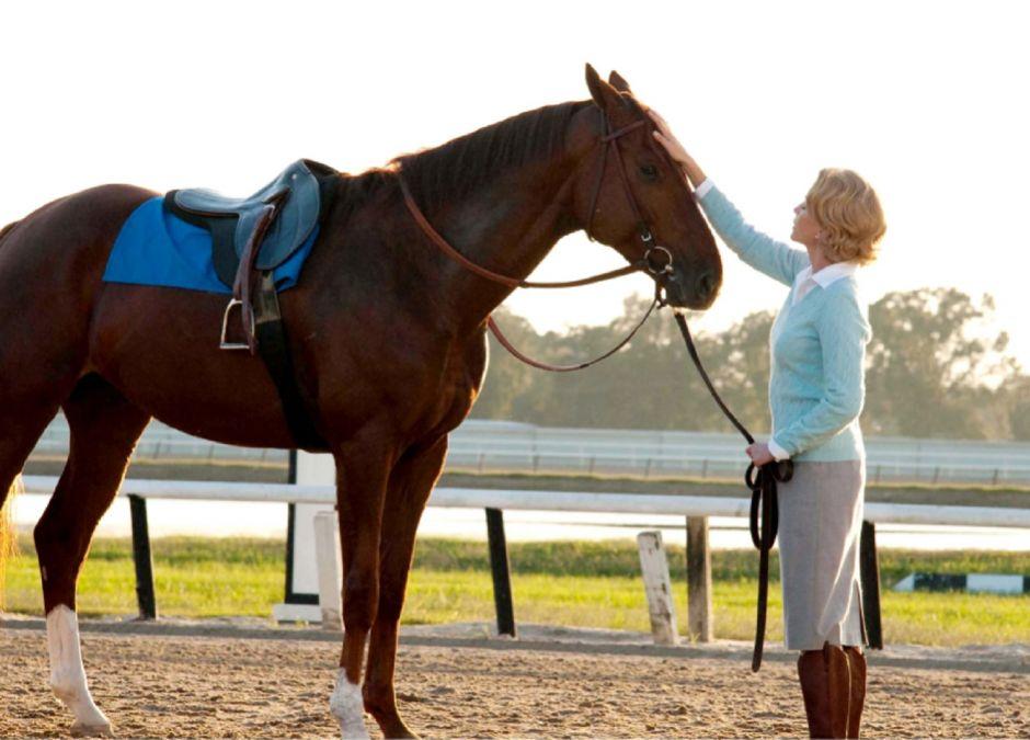 Filmy o koniach: najpiękniejsze filmy o koniach dla całej rodziny!