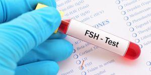 FSH hormon
