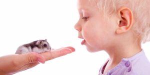 Gdy dziecko boi się zwierząt