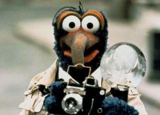 gonzo, muppety