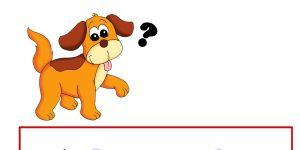gra logiczna, gra dla dzieci, pies i cienie, dopasowywanie kształtów