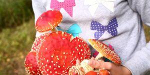 grzyby trujące w rękach dziecka2.jpg