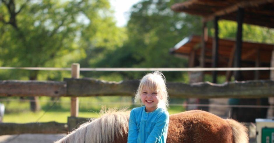 hipoterapia, dziecko, koń, alergia