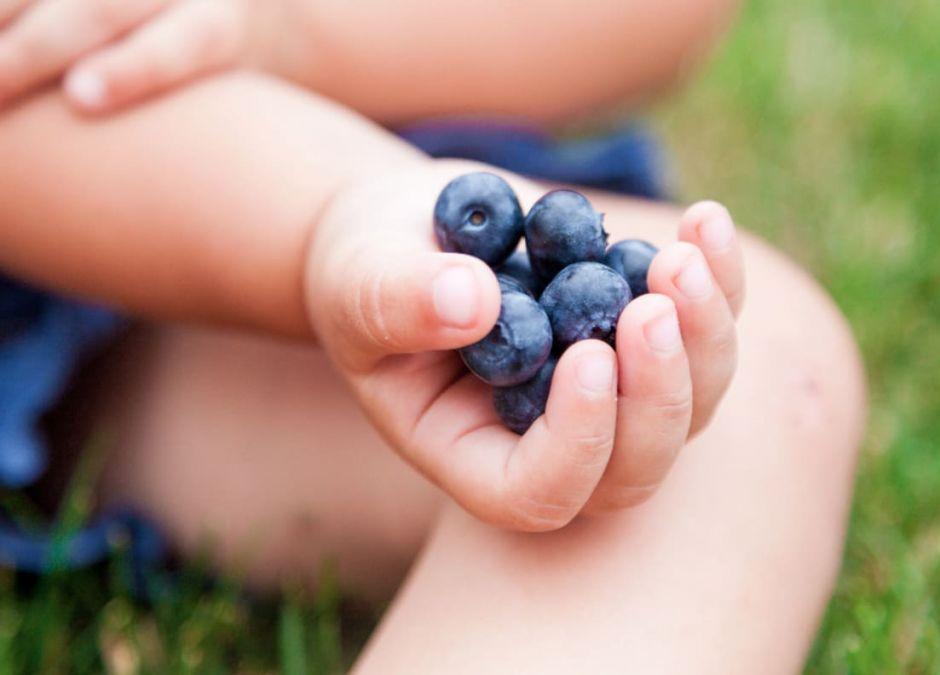 jagody na biegunkę