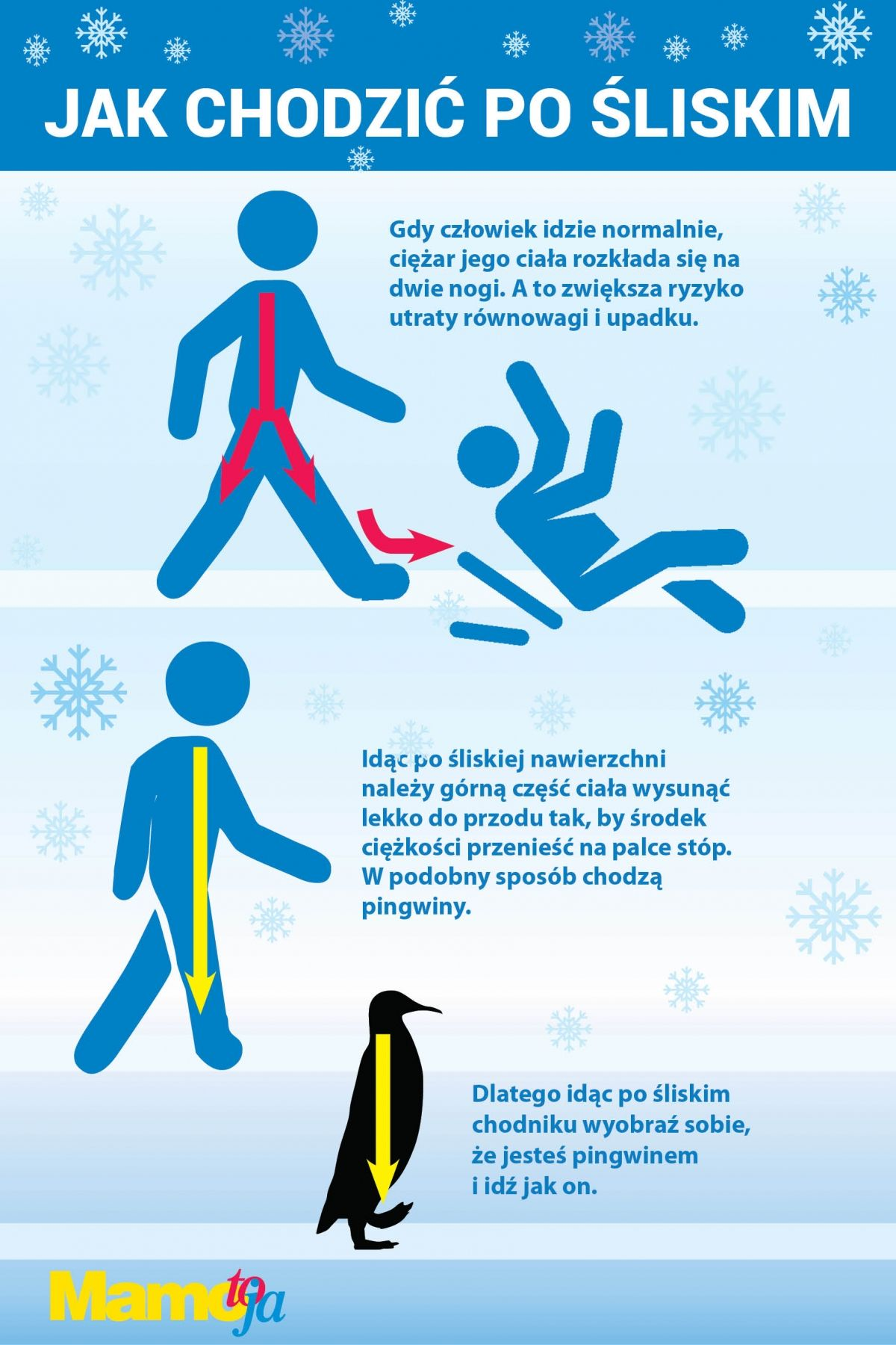 Jak chodzić po śliskim? Infografika