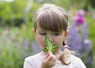 Jak ćwiczyć węch dziecka