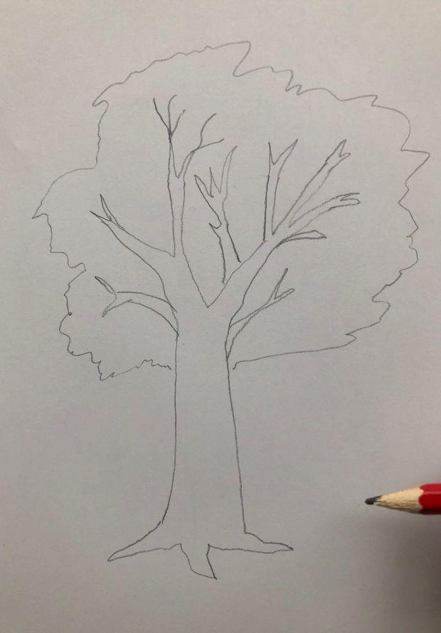 jak narysować drzewo krok po kroku