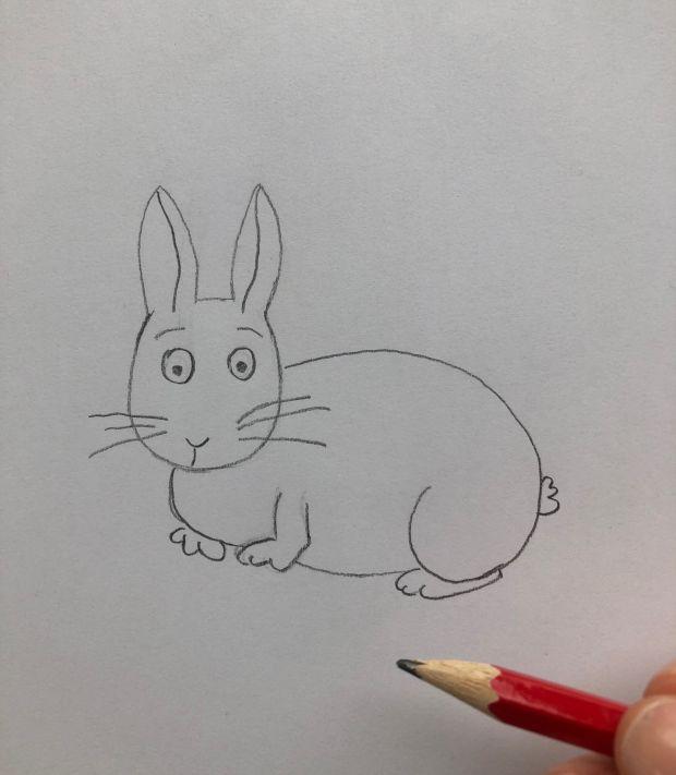 królik rysunek - krok 4