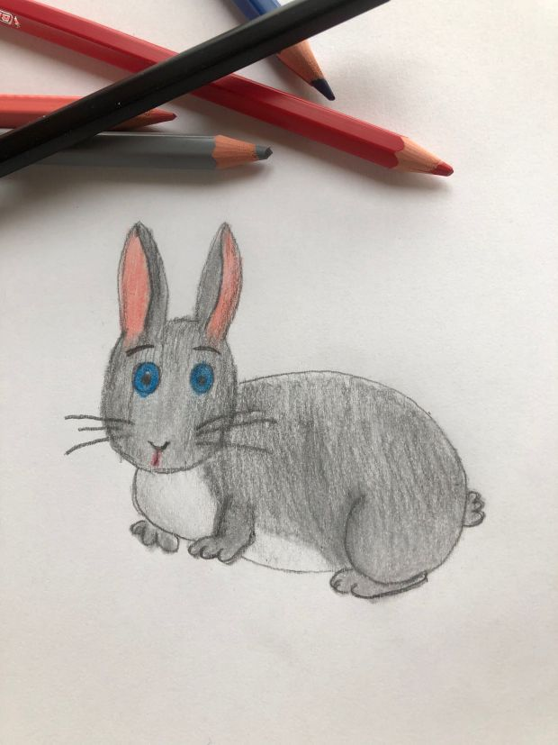 jak narysować królika krok 5