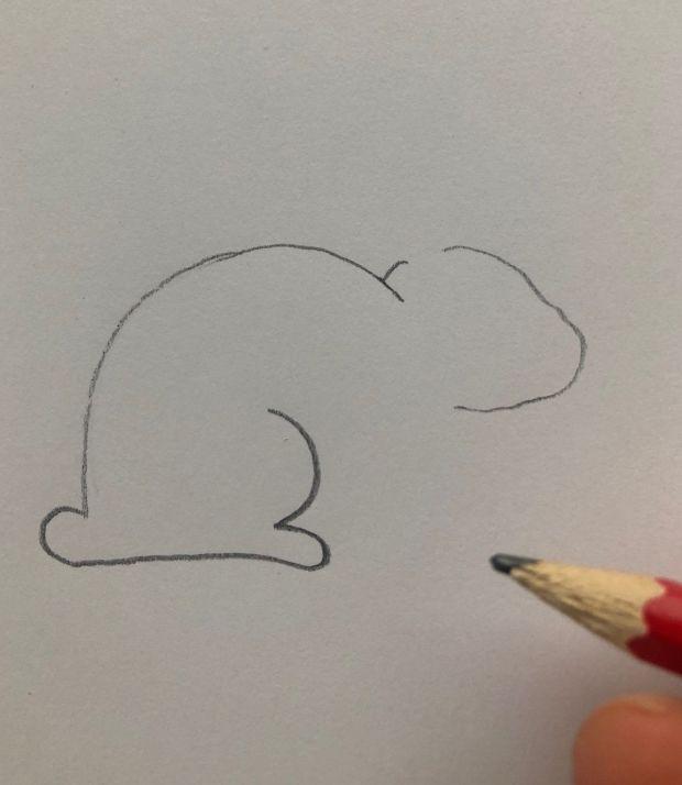 jak narysować zająca
