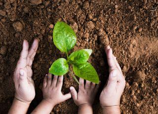 jak nauczyć dziecko ochrony środowiska