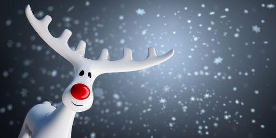 jak wygląda Mikołaj renifer Mikołaja