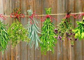 Jaki syrop ziołowy na kaszel suchy u dzieci?